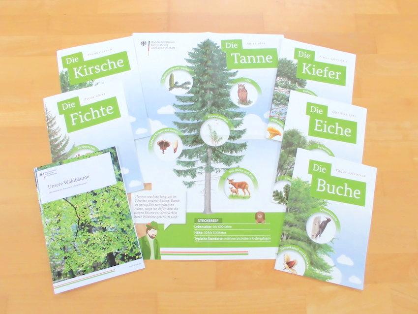 KOSTENLOS: Poster zur Waldfibel