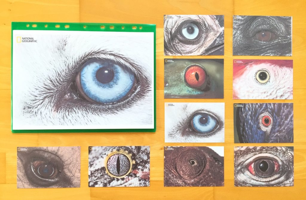 Ziemlich Ks2 Mathe Arbeitsblatt Bilder - Mathematik & Geometrie ...
